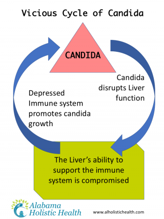 Top 15 risks of candida (yeast) overgrowth in your body